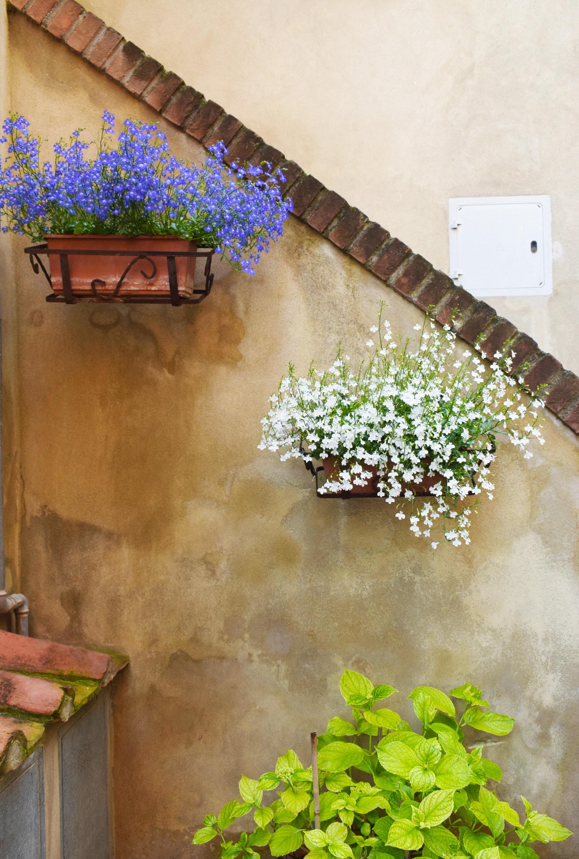 terraza espacio decoración