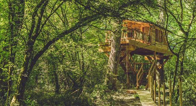 Basoa suites cabaña árbol
