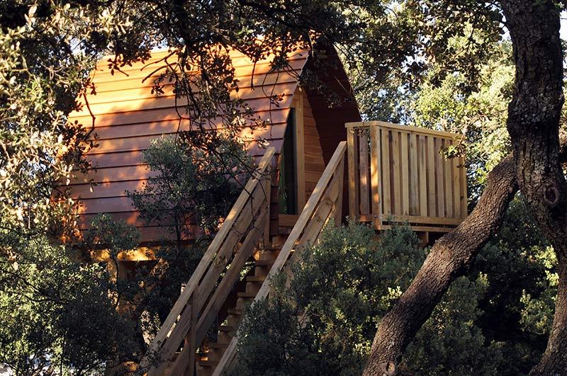monte holiday casa del árbol