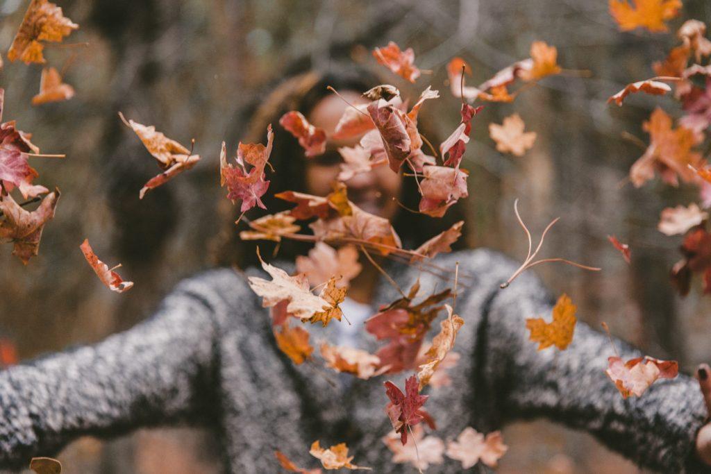 decoración jardín otoño