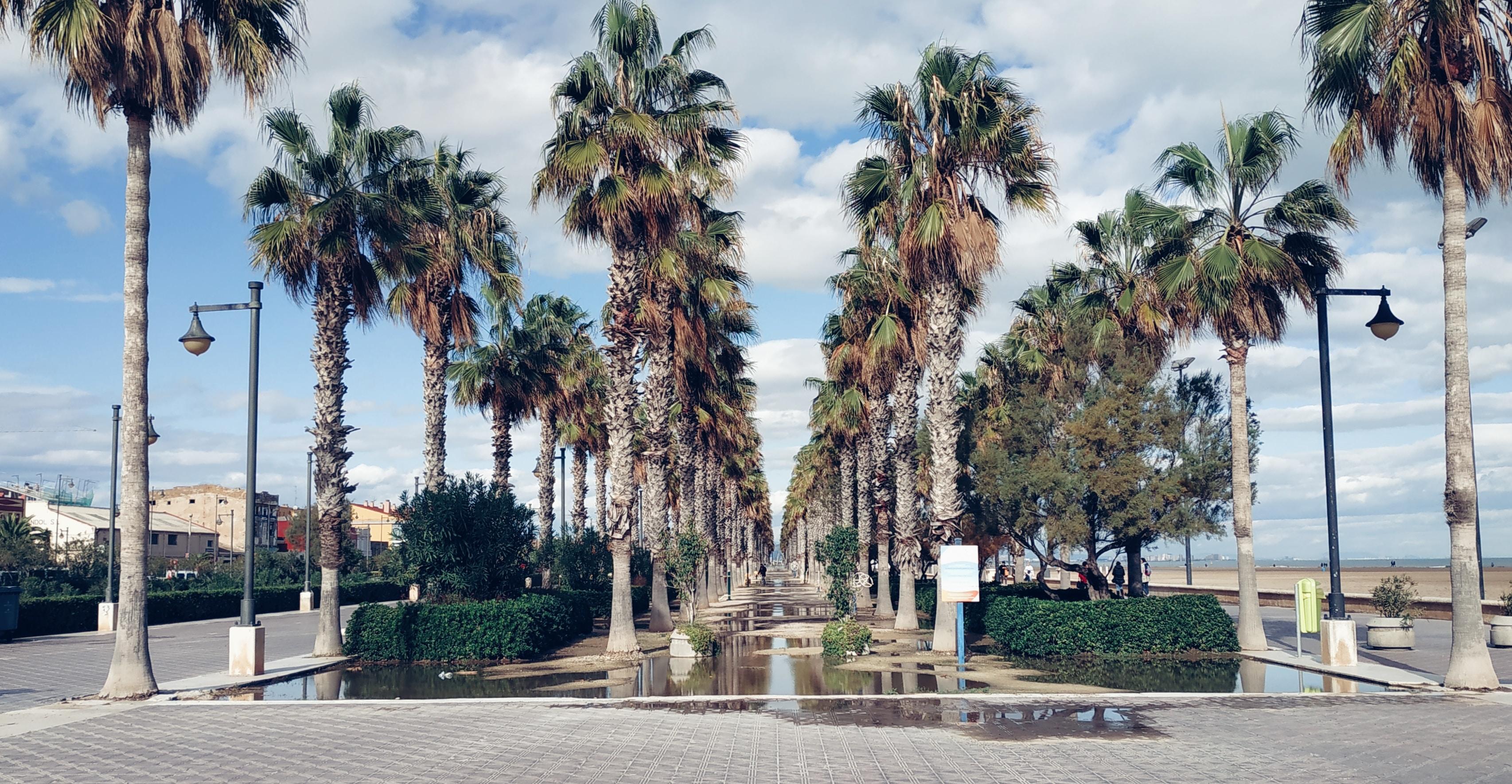 Pisos en venta en Valencia Playa