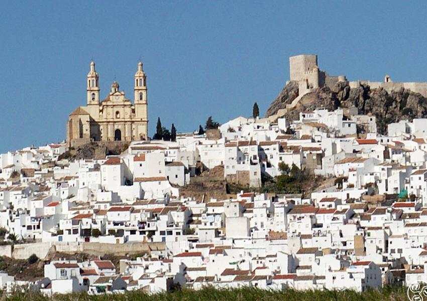 Fuente: Andalucía
